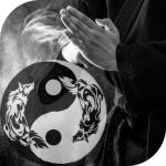 Wolf Den Martial Arts Academy